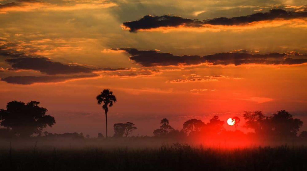 Coucher de soleil au Deta de l'Okavango au Botswana