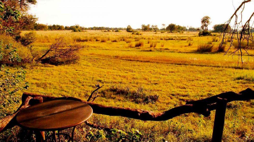 Les plaines à perte de vue au Chitabe Camp
