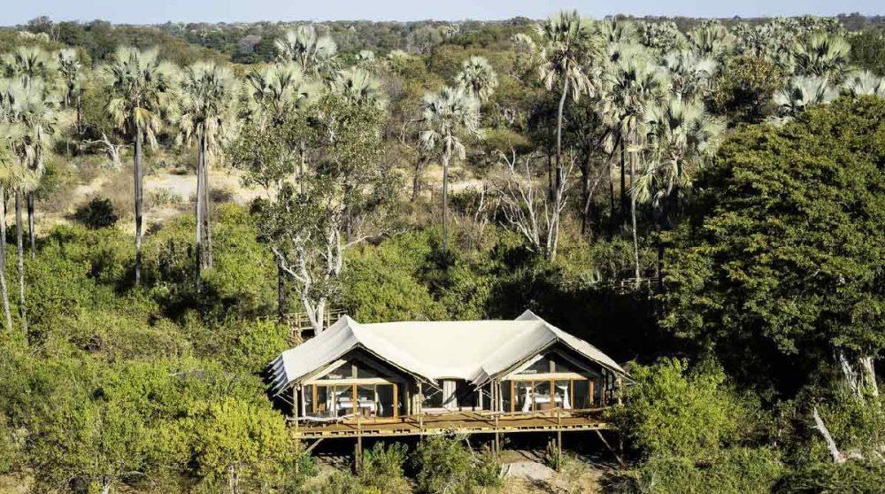 Vue aérienne de Tubu Tree Camp