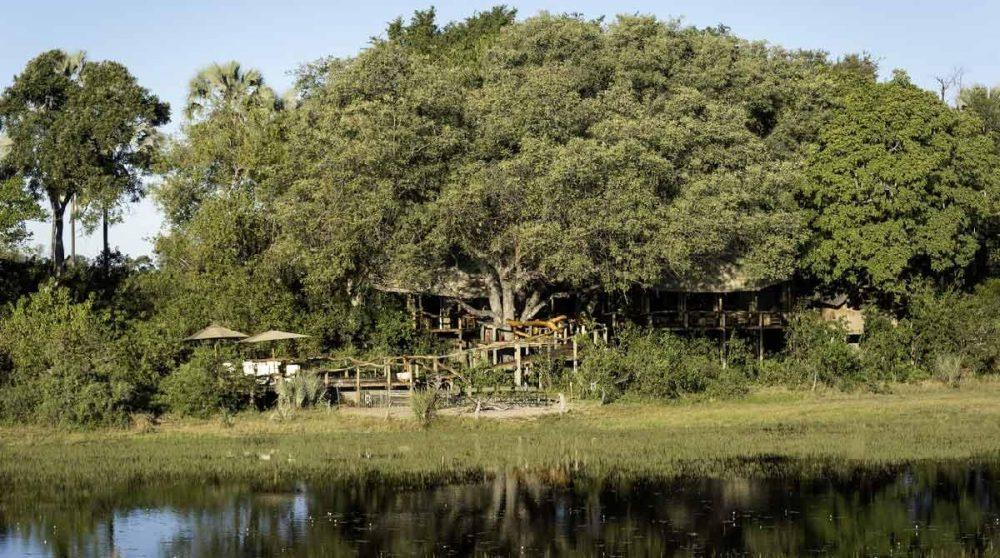 Le camp niché dans la verdure au Botswana