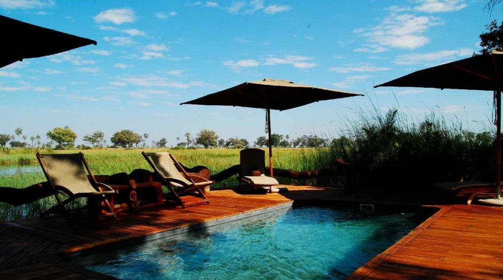 La piscine au Botswana