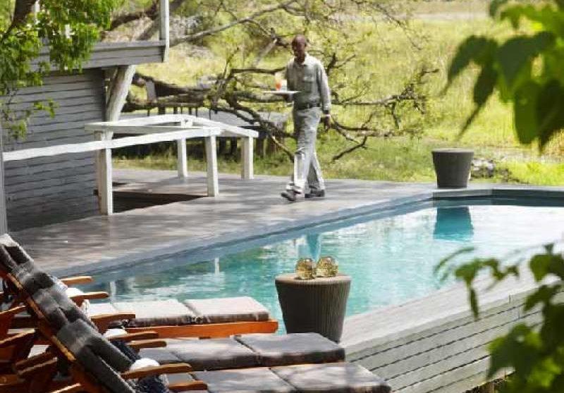 La piscine du camp au Botswana