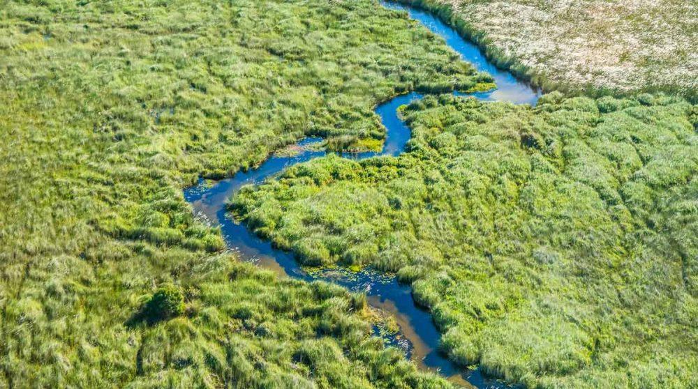 Vue aérienne de l'Okavango verdoyant