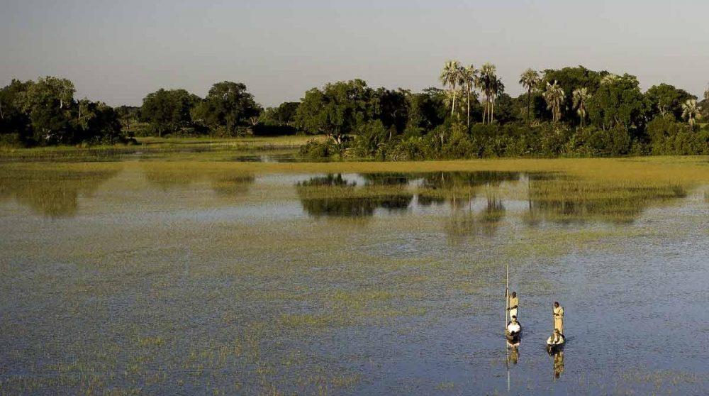 En mokoro sur le Delta de l'Okavango