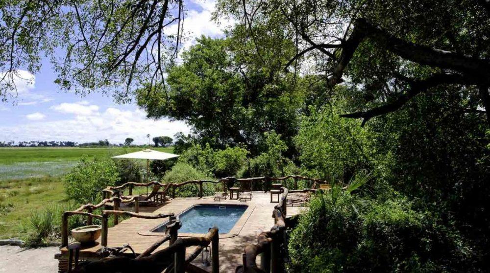La piscine de Tubu Tree camp