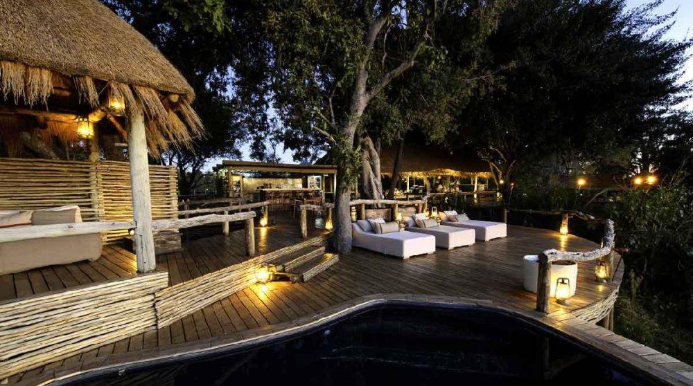 Depuis la piscine au Botswana