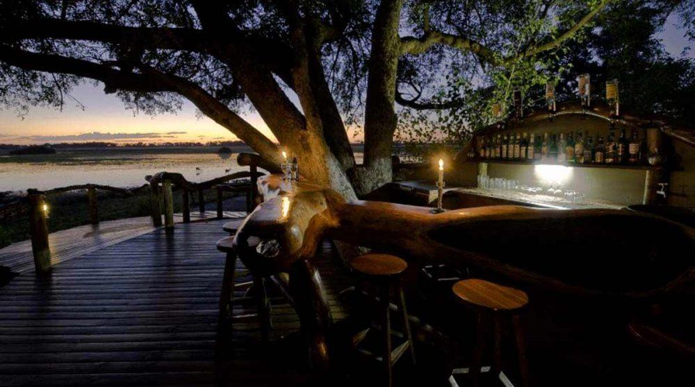 Le bar dans le Delta de l'Okavango