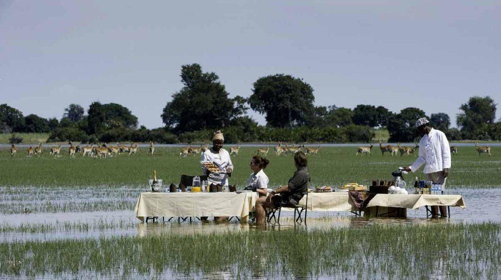 Repas les pieds dans l'eau au Botswana