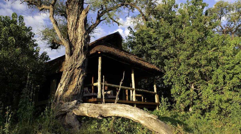 Vue de l'une des tentes depuis le jardin au Botswana