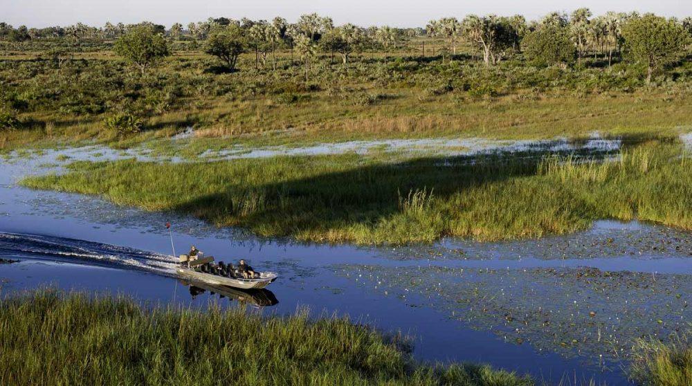 Safari en bateau à moteur au Botswana