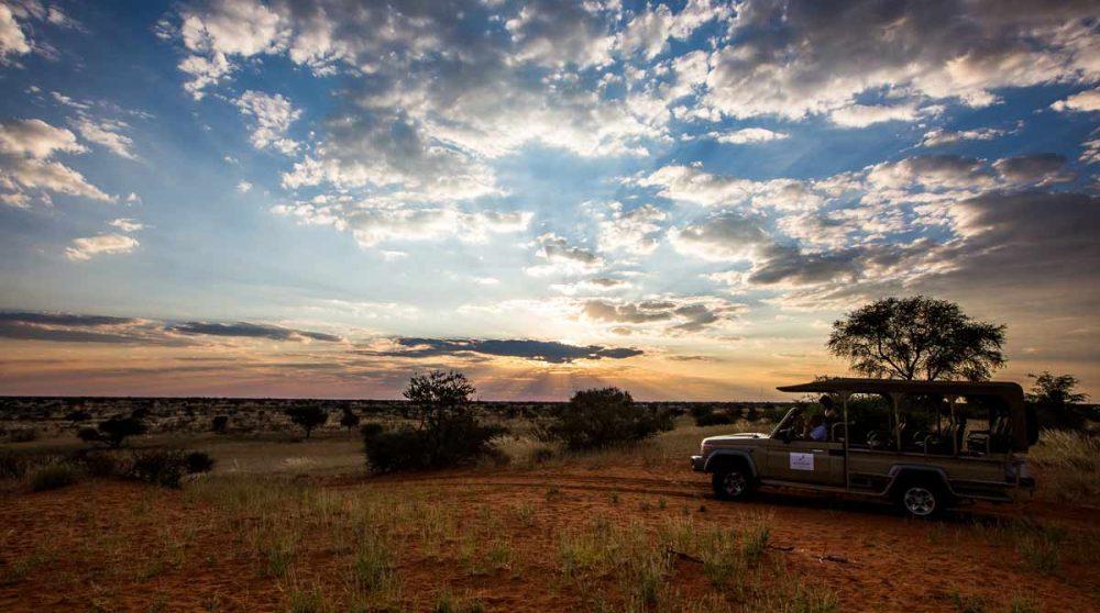 Safari près du lodge en Namibie