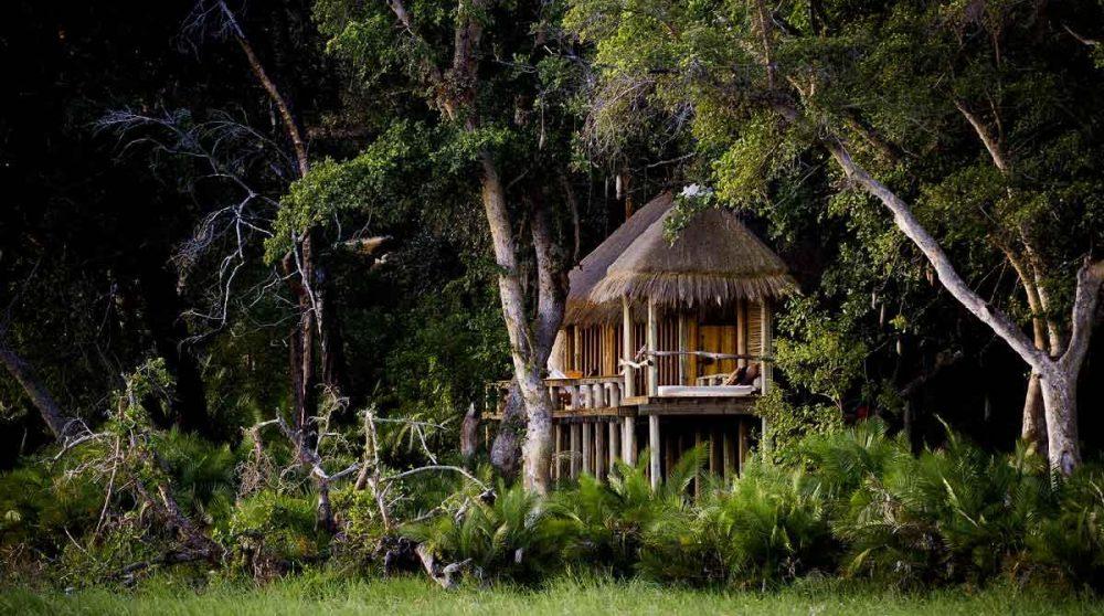 Une tente nichée au cœur de la nature au Botswana