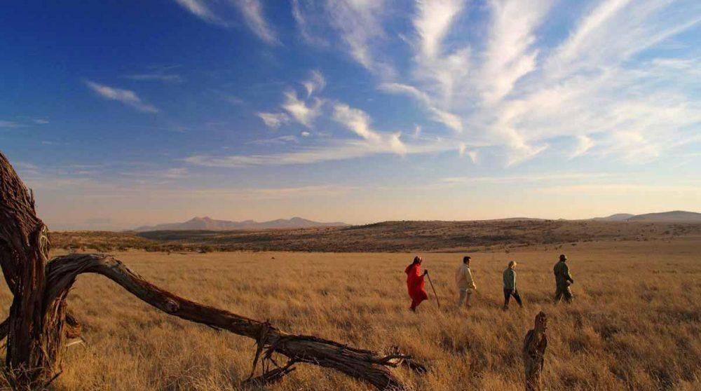 Une marche sous le ciel infini à Lewa Safari Camp