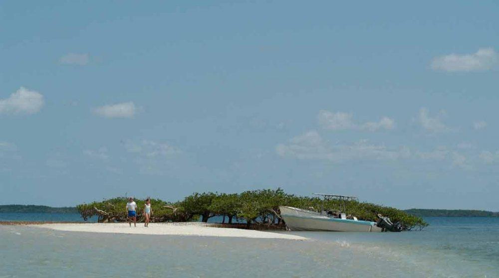 Le Manda Bay vue de loin