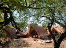 Le Mwagusi Safari Camp