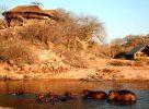 Vue sur le Ruaha River Lodge