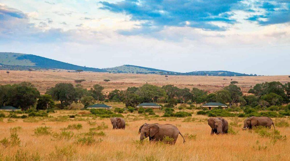 Le Sand River Masai Mara