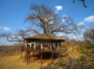 Bienvenue au Tarangire Treetops en Tanzanie