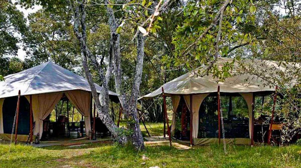 Le jardin et les tentes au Kenya