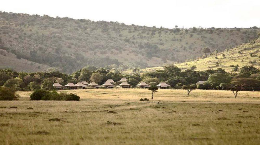 La nature environnante dans le Masai Mara