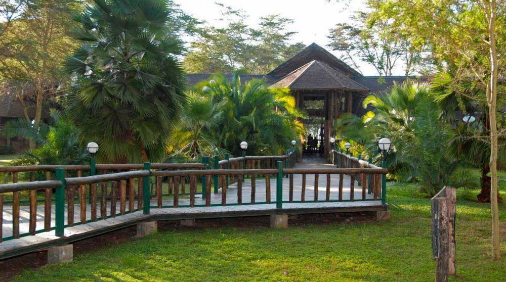 Une allée dans le jardin au Kenya