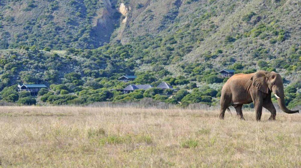 Autre vue du camp depuis la plaine en Afrique du Sud