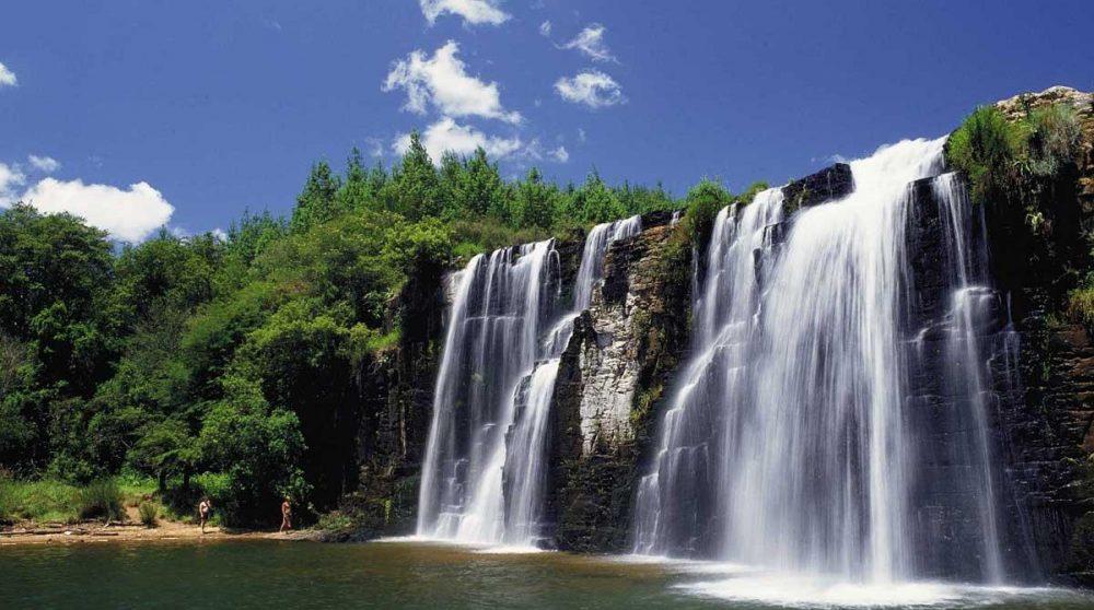 Les Forest Falls dans le Mpumalanga