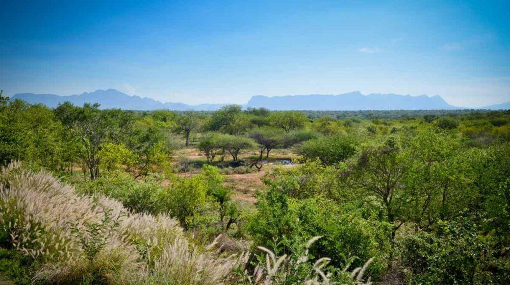 La vue sur les monts du Drakensberg en Afrique du Sud