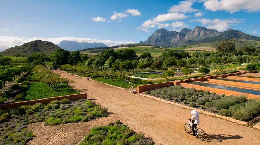 Le potager en Afrique du Sud