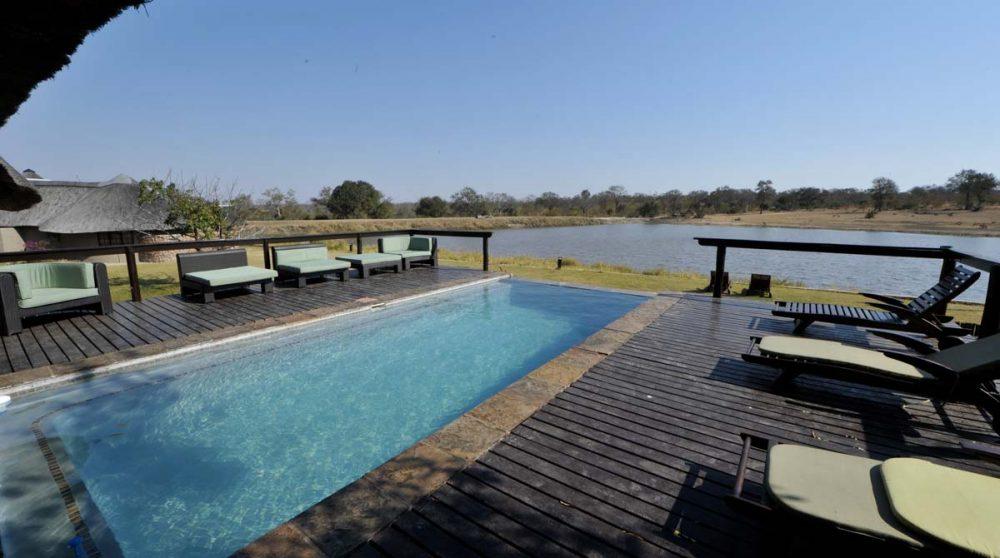 La piscine donnant sur la nature