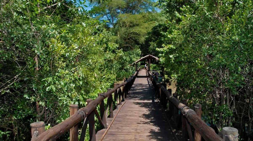 Le pont pour aller à l'hôtel