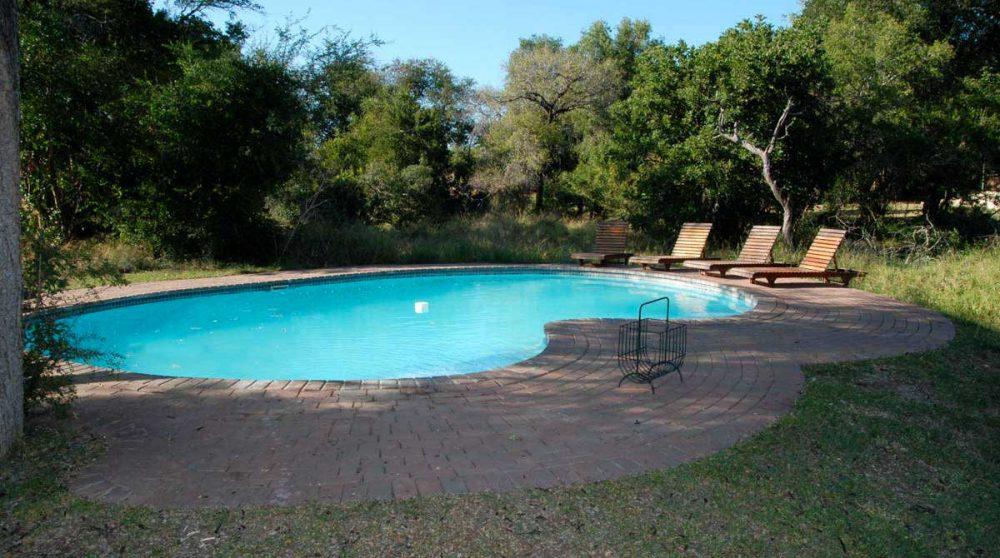 La piscine à Manyeleti