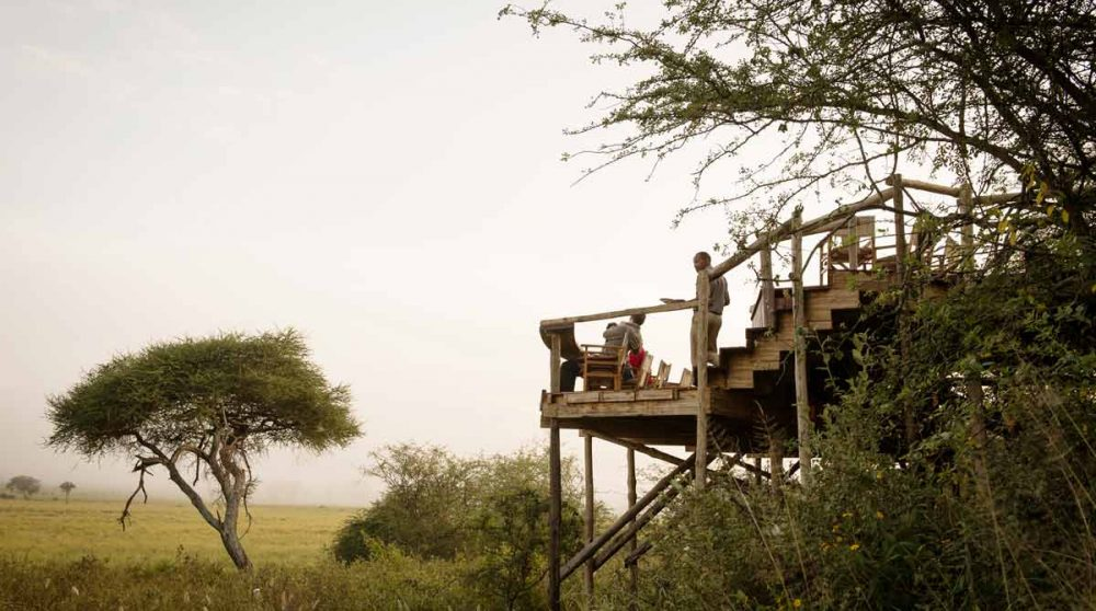 La terrasse suspendue de l'Oliver's Camp