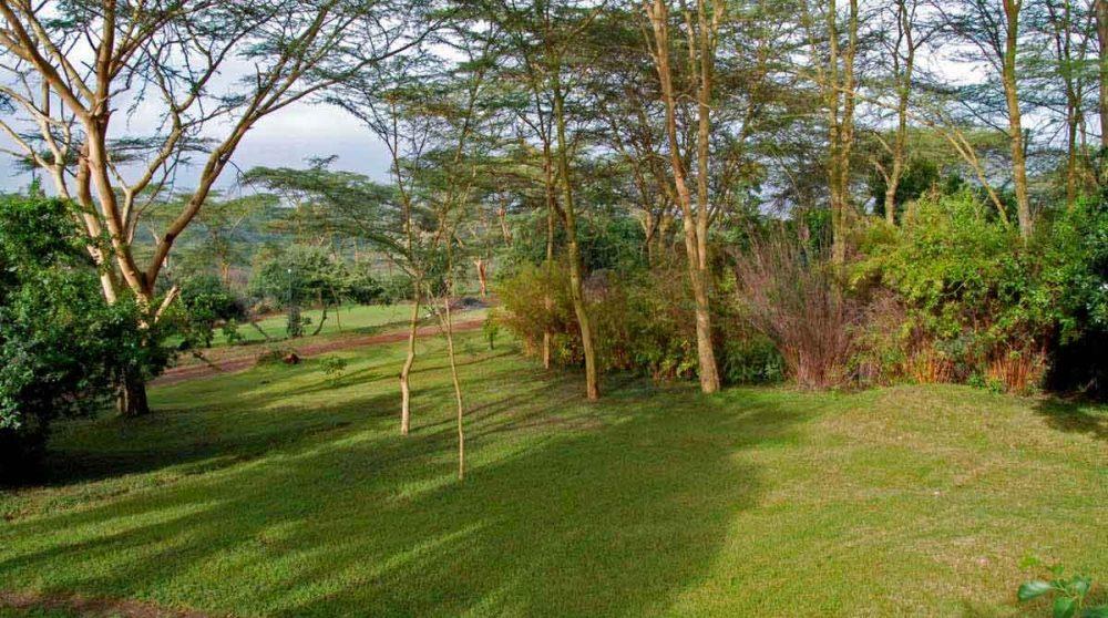 Le jaridn du Sarova Lion Hill Lodge