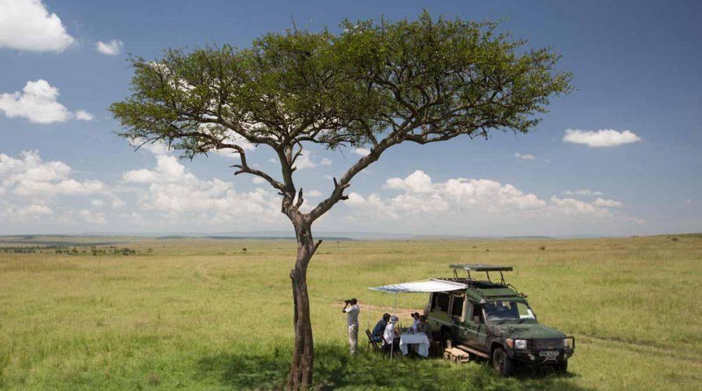 Pose pendant le safari du matin dans le Masai Mara