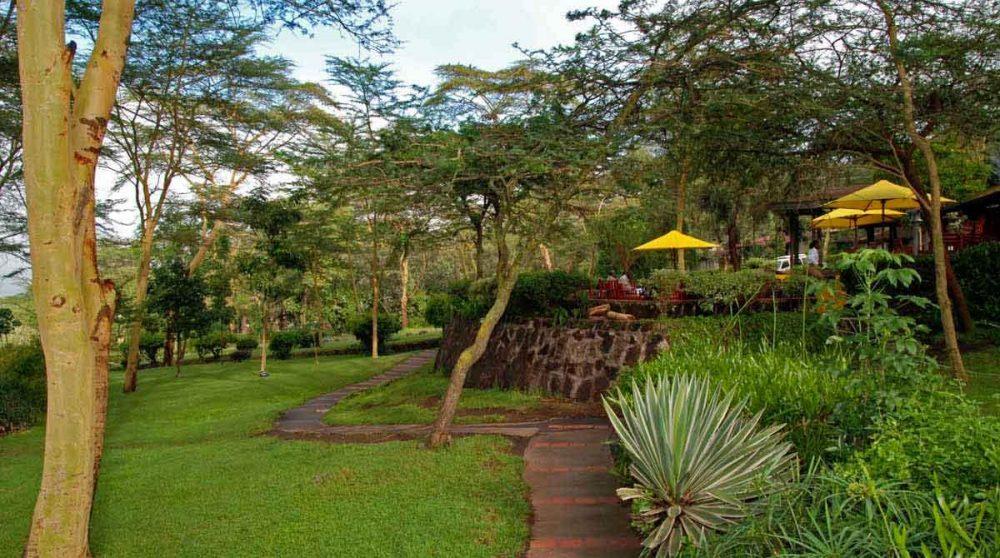 Une allée dans le jardin au Lac Nakuru