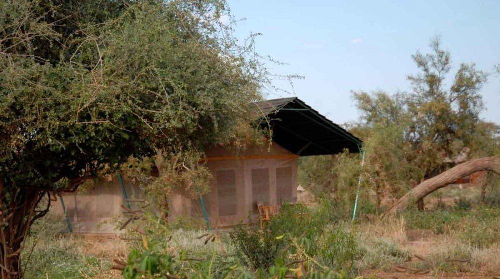 Autre vue d'une tente à Amboseli