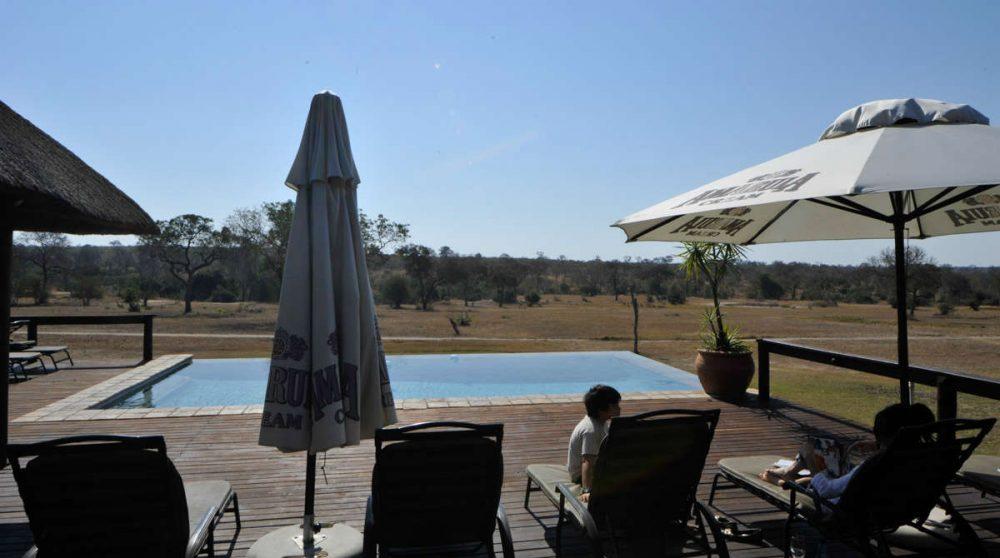 Vue sur la nature depuis la piscine en Afrique du Sud