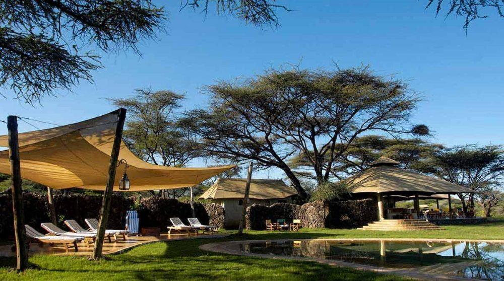 Chaises longues dans le jardin à Shaba