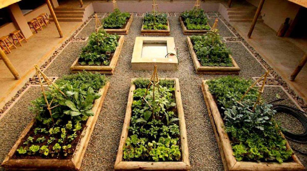 Cour intérieure avec des plantations