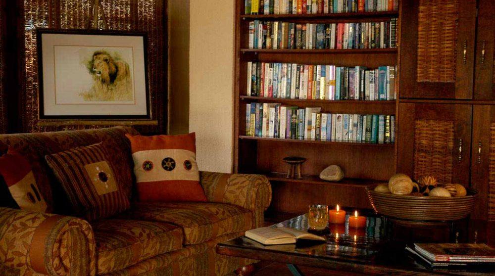 Bibliothèque dans un salon