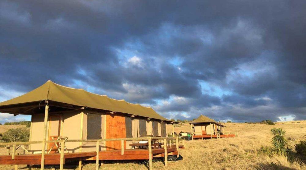 Une Family Tent de l'Amakhala Hlosi Lodge