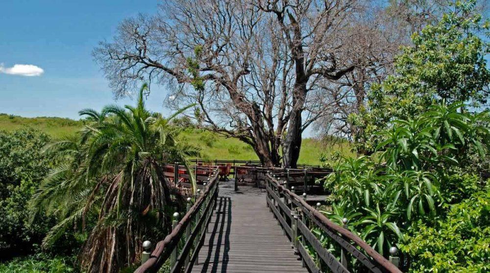 Accès à une terrasse du Keekorok
