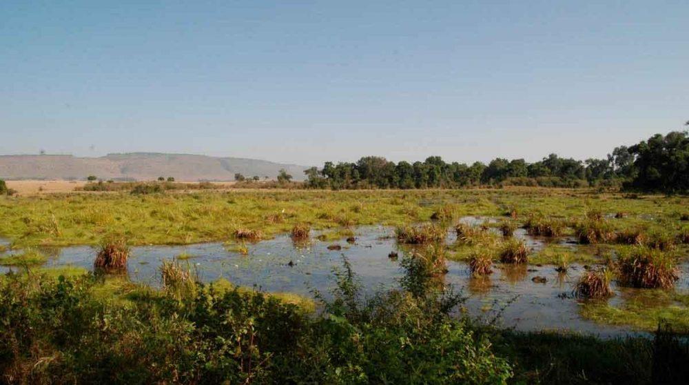 La nature préservée à Little Governors Camp
