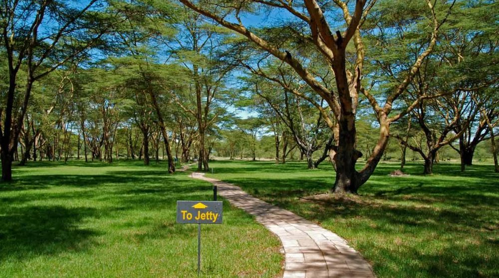 Une allée du jardin au Naivasha Simba Lodge
