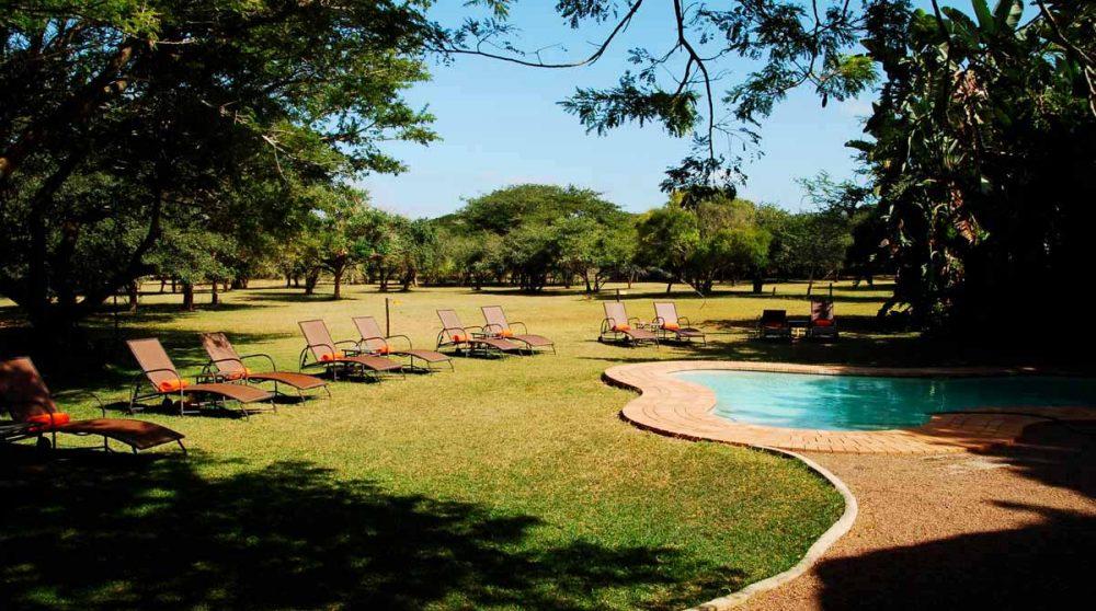 La piscine et le jardin en Afrique du Sud
