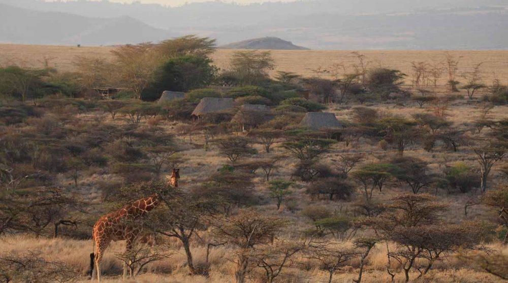 Les tentes au Kenya