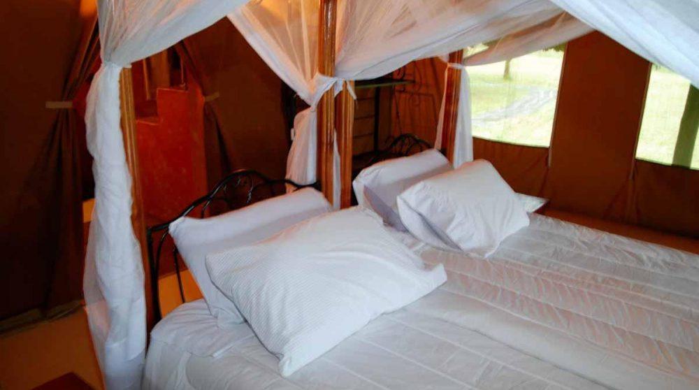 Une chambre au Lac Nakuru