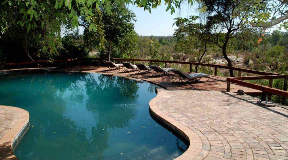 La piscine du camp à Sabi Sand