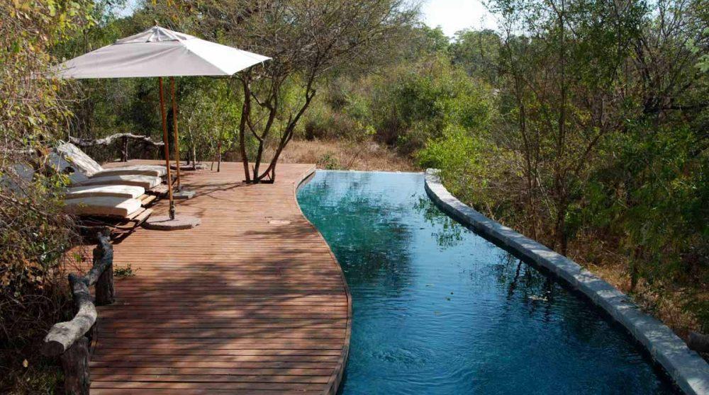 La piscine à Londolozi